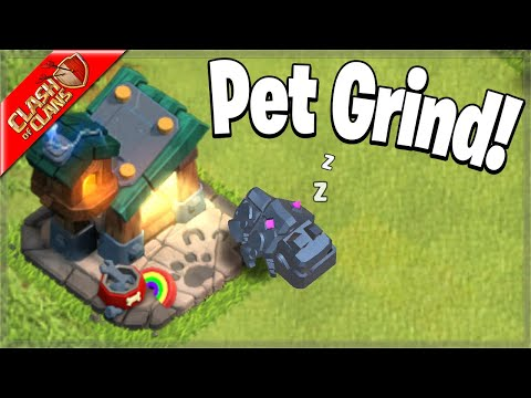 Time to get the PETS going up! (Clash of Clans)